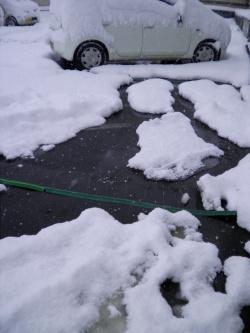 融雪プロテクター使用例失敗